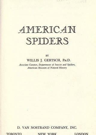 American spiders