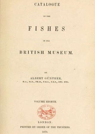 Fishes in the British Museum