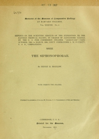 The Siphonophorae